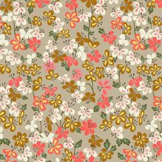Dashwood studio fabrics are fab