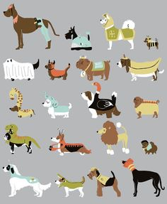 Various dogs that you might often see ... uhm, somewhere ... :P