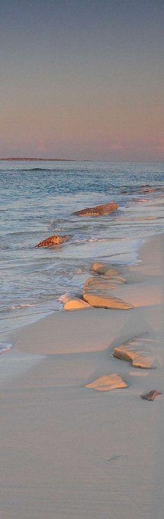 Salt Cay Beach - Turks & Caicos | Caribbean