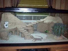 jpg Bearded Dragon Stuff Vivarium, Reptiles Tanks, Dragons Cages - Anita Smith Home Bearded Dragon Habitat, Bearded Dragon Cage, Bearded Dragon Funny, Vivarium, Paludarium, Bartagamen Terrarium, Lizard Terrarium, Lizard Tank, Snake Tanks