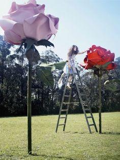 Alice in Wonderland by Tim Walker Tim Walker, Giant Flowers, Paper Flowers, Large Flowers, Wedding Fotos, Foto Fantasy, Decoration Evenementielle, Instalation Art, Painting The Roses Red