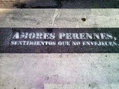 http://www.revistaelobservador.com/sociedad/9657-aparece-en-malaga-un-paso-de-peatones-con-versos-una-mala-copia-de-una-intervencion-del-colectivo-boamistura-en-madrid-y-en-barcelona