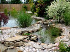 Zahradní koupací jezírka | Realizace zahrad