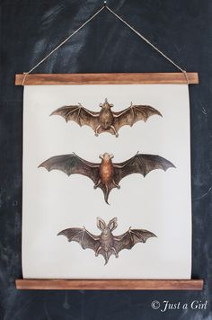 eighteen25: DIY Bat Print Wall Hanging