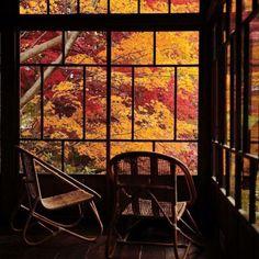 #autumn #autumnishere #fall #fallishere #autumn2015 #fall2015 #autumnleaves #leaveschanging #fallleaves #sweaters #pumpkins #hotchocolate #sweater #pumpkin  #tea #nature #sky #clouds #sun #sunshine  #moon #moonlight #campfire #campfires #coldair #coolair #hat #hats #hoodies #autumnnights