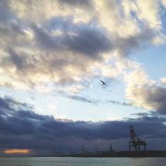 【myutaroufish】さんのInstagramをピンしています。 《#夕景 #夕焼け #日没 #雲 #空 #マジックアワー #ブルー #海 #クレーン #キリン #大阪港 #大阪湾 #日暮れ #大阪湾 #天保山 #空色 #sunset #cloud #sky #sea #blue #osaka》
