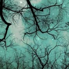 """Winter Teal Christmas Sky"""
