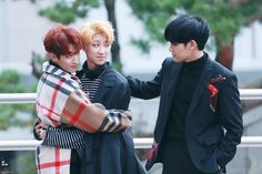 """Their faces are like, """"Oh hey Mingyu, wanna join?"""""""