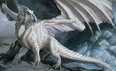 dnd white dragon - Google Search