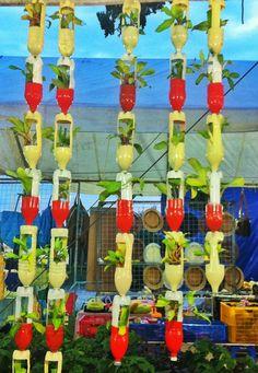 Repurpose plastic bottles as planters