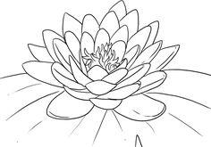 dibujos para colorear de flor de loto