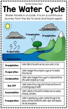 Science Mini Anchor Charts The Water Cycle Anchor Chart. Add this mini anchor chart to your student's science journals. The information included will help them remember the names and definitions of the different stages of the water cycle. 6th Grade Science, Science Experiments Kids, Teaching Science, Science Education, Science For Kids, Science Crafts, Science Tools, Earth Science Lessons, Elementary Science Classroom