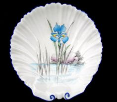 SHELLEY IRIS IN THE STREAM SHELL SHAPED DISH Old Plates, Vintage China, China Porcelain, Cup And Saucer, Iris, Tea Cups, Decorative Plates, Shells, Pottery