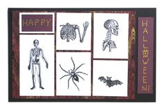 """A Spooky """"Specimen"""" Card for Halloween Halloween Cards, Natural History, Blessings, Stamps, Blessed, Gallery Wall, Fine Art, Happy, Projects"""