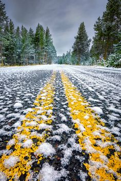 Snow-covered roadway in Yellowstone National Park  (by dfikar on Flickr)
