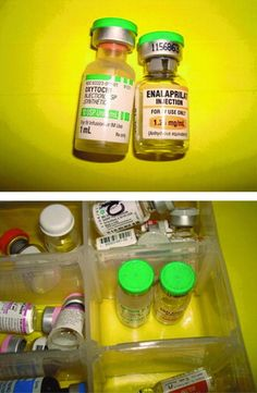 Structured Inspection of Medications Carried and Stored by Emergency Medical Services Agencies Identifies Practices That May Lead to Medication Errors - Prehospital Emergency Care - Volume 16, Issue 1