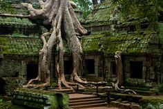 City of temples - Cambodia 15 Most Breathtaking Abandoned Places in the World