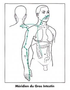 Meridian Acupuncture, Acupuncture Points, Acupressure Points, Qi Gong, Ayurveda, Shiatsu, Acupressure Treatment, Abs Workout Video, Traditional Chinese Medicine