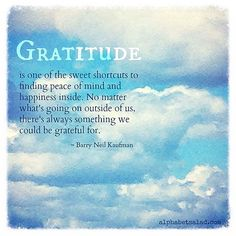 Today's Gratitude List + December 2015 Gratitude Linkup - blog post by Laurel Regan at Alphabet Salad.
