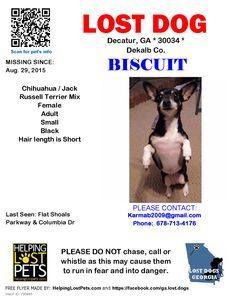 Lost Dog - Chihuahua - Decatur, GA, United States