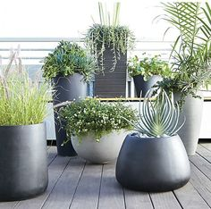 Unique garden design, post makeover number 3401943255 to try now. Large Outdoor Planters, Tall Planters, Cement Planters, Modern Planters, Garden Planters, Black Planters, Plastic Planters, Contemporary Planters, Terrace Garden