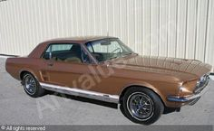 ford-vehicles-1967-ford-mustang-gta-coupe-1774522.jpg (462×284)