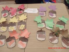 Matching/Sorting:    Leaf sorting by colors