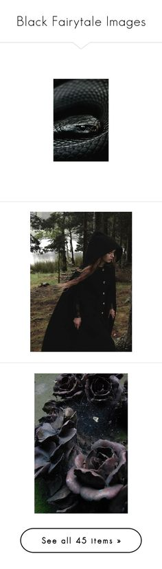 """""""Black Fairytale Images"""" by storycosmicjasmine ❤ liked on Polyvore featuring animals, pictures, backgrounds, image, photos, photo, pics, witches, images and filler"""