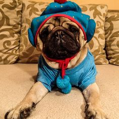 I started the week in pajamas so I decided to end it in the same fashionable way #mauricethepug #pajamas #lazysunday #fashion #weekend #pug #mops #dog #puppy