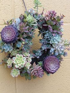Succulent Wreath---This Screams Spring...Love It...Would Be Easy To Make!!