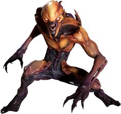 The Imp is a large humanoid creature spawned from the depths of Hell who originally appeared in Doom and has been in every Doom game since. The imps are the first infernal monster found in the relaunch of Doom Doom 1993, Doom 2016, Fantasy Monster, Monster Art, Geeks, Doom Demons, Minis, Doom Game, Humanoid Creatures