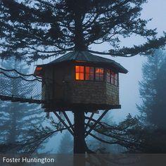 Foster Huntington Hat Mit Freunden Ein Baumhaus Gebaut! Foster Huntington  Hat Mit Freunden Ein Baumhaus