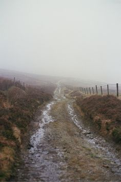 I've done loads of walks down tracks just like that, in weather just like that. It looks like North Yorkshire.