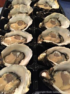 Fresh Seafood - Lease 65 Oysters