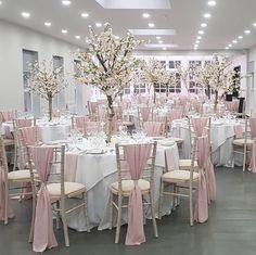 Wedding Hire, Wedding Cakes, Wedding Services, Hunton Park, Bridal Shower Desserts, Wedding Decorations, Table Decorations, Blossom Trees, Park Weddings