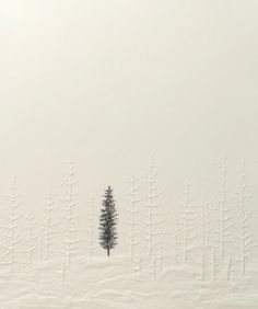 Silent Forest (single tree), 2011 by Kyla Cresswell  Embossing with pencil on 210 x 180 mm paper  From an edition of 10