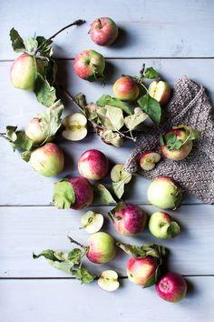 Apple Cinnamon Rolls + A few Apple Picking Photos | Flourishing Foodie