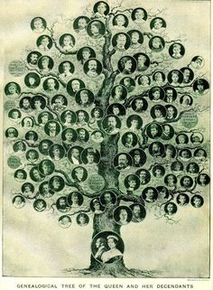 Woahh. Genealogical Tree of the queen (which one?) and her decendants