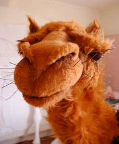 amazing camel artist doll