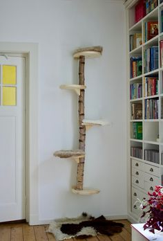 Diy Cat Shelves, Diy Cat Hammock, Cat Climbing Tree, Cat House Diy, Diy Cat Tree, Living With Cats, Cat Window, Cat Room, Animal Projects