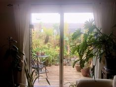 Tropical Houses, Indoor Garden, Family History, Your Life, Gardens, Australia, In This Moment, London, Business