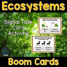 This interactive deck will challenge your students to learn the basics of ecosystems and energy flow. This digital resource is hosted on Boom Learning™️. Boom Cards™️ require absolutely no printing, laminating, cutting, or grading. It's all done for you!