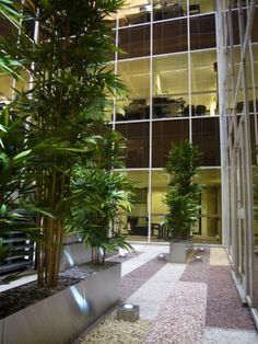 Even a dark atrium can be planted: Artificial bamboo brings greenery into this office space.