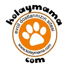 Kolaymama Pet Shop Pet Shop, Pets, Shopping, Pet Store