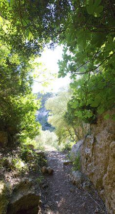 Envie de nature ? nous avons sélectionné les plus belles destinations pour passer au vert !