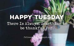 Good Morning, Happy Tuesday there is always, something to be thankful for. Happy Tuesday Meme, Tuesday Quotes Funny, Tuesday Motivation Quotes, Tuesday Quotes Good Morning, Tuesday Greetings, Tuesday Humor, Good Morning Photos, Funny Quotes, Daily Quotes