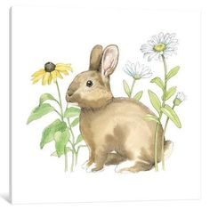 "Lark Manor Wildflower Bunnies II Graphic Art on Wrapped Canvas Size: 18"" H x 18"" W x 0.75"" D"