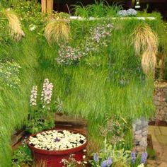 Green Living Wall Gallery | Green Living Technologies Vertical Garden Plants, Vertical Planter, Living Roofs, Living Walls, Growing Plants, Planters, Gallery, Green, Design