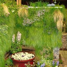Green Living Wall Gallery | Green Living Technologies Vertical Garden Plants, Vertical Planter, Living Roofs, Living Walls, Plant Wall, Growing Plants, Planters, Gallery, Green