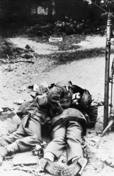 British dead after the Battle of Arnhem/September 1944 - pin by Paolo Marzioli